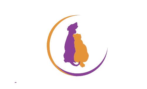 Spotlight On… Luna Animal Rescue