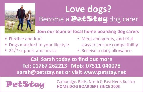 Pet Stay – The Alternative to Kennels