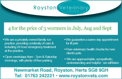 Royston Vets – Grass Seed Season