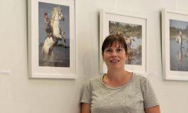 Melbourn Artist's Stunning Equine Exhibition