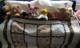 Soft Toy Christmas Sleepover at Royston Library