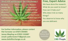 CBD Oil – What Is All The Fuss About?
