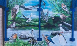 Icknield Walk First School's New Mural!