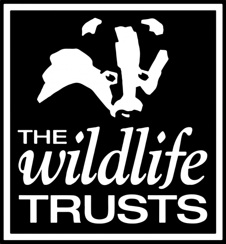 Coming Up at The Wildlife Trust