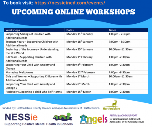 Online Workshops: Child Support