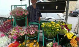 News from Royston Market – Mr Sharman's Flower Stall