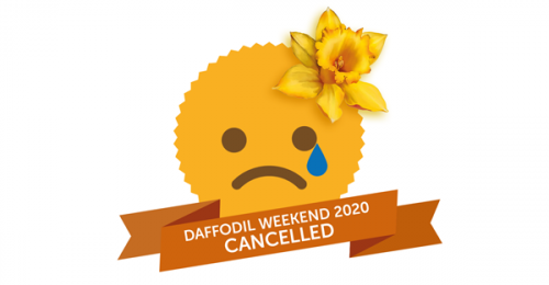 Out & About: Thriplow Daffodil Weekend CANCELLED