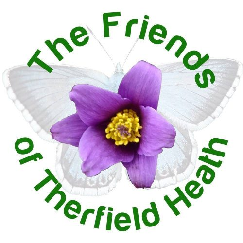 Friends of Therfield Heath