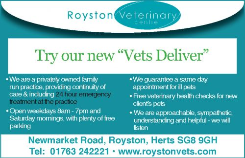 Business Profile: Royston Vets